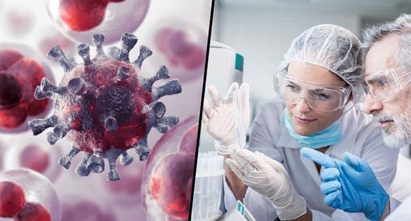 Лекарство от рака? Израильские ученые, возможно, нашли его
