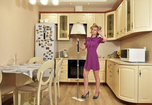 Госдума отклонила законопроект о выплатах МРОТ домохозяйкам