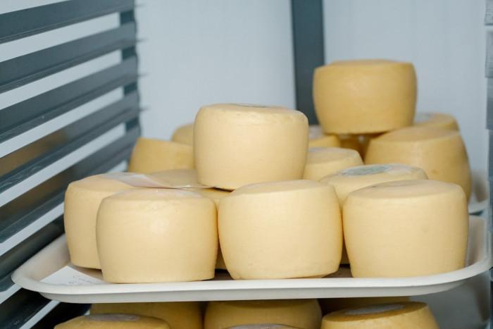 Подмосковье стало лидером по производству сыра в России