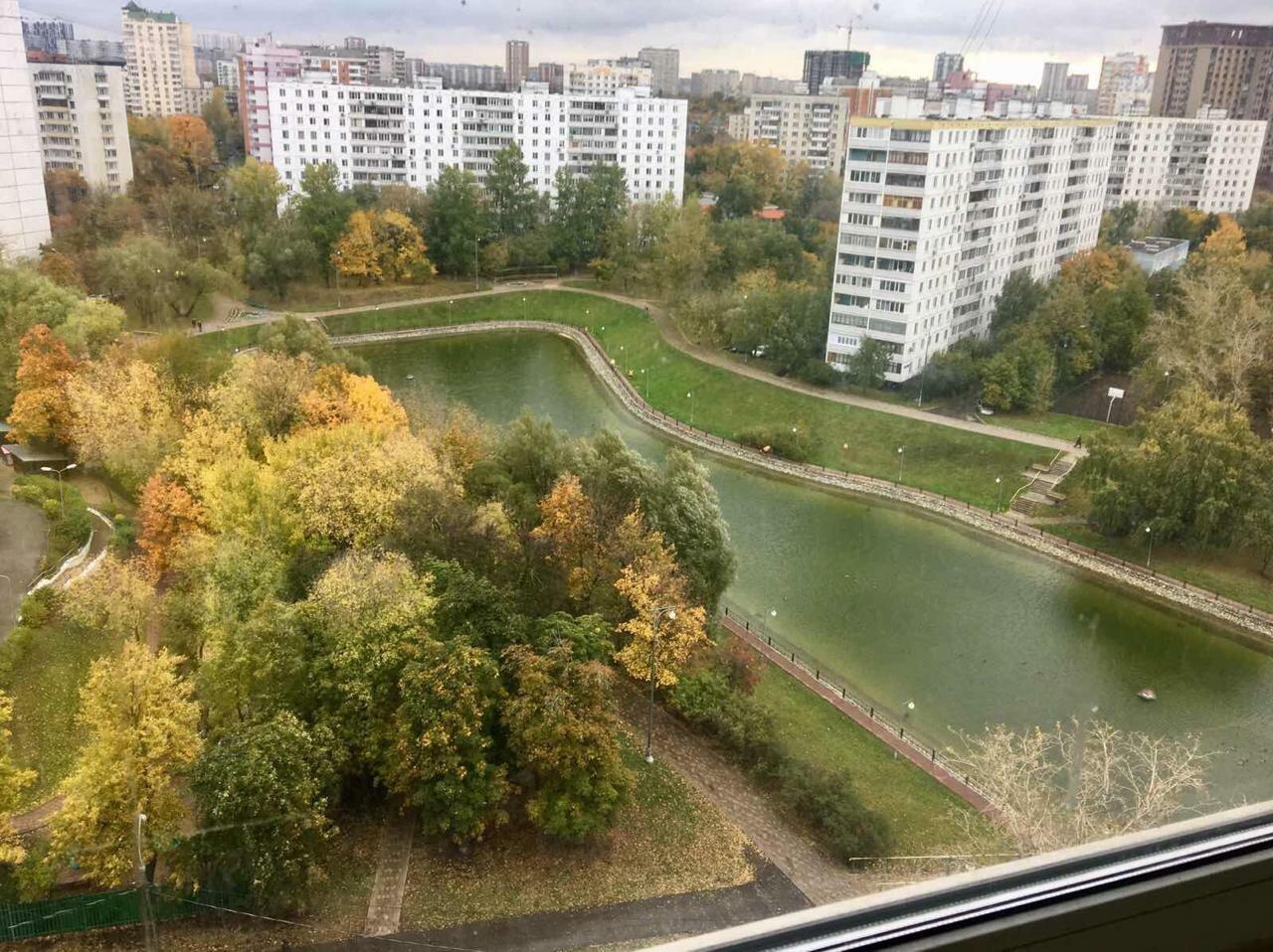 На севере Москвы у Дегунинского пруда появятся памп-трек и игровые площадки