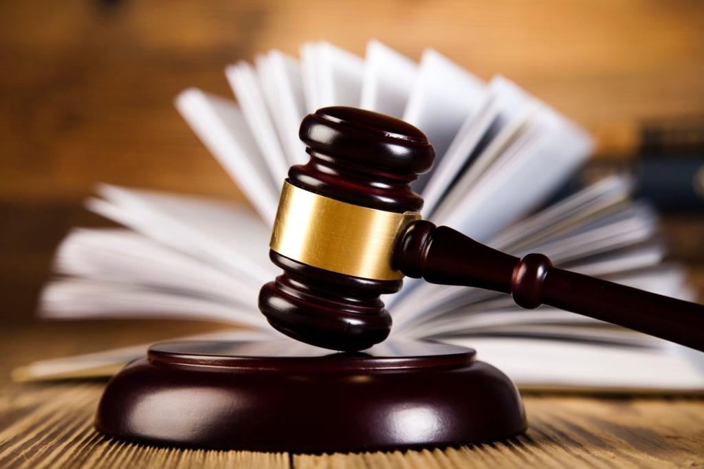 Московский суд принял новый иск Пригожина к юристу ФБК*