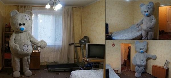 Москвич переоделся медведем, чтобы сдать квартиру в аренду