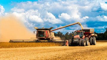 Сбор зерна к началу сентября на 5,8% обгоняет показатели прошлого года