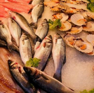 Аргентина планирует в два раза удвоить поставки рыбы в РФ